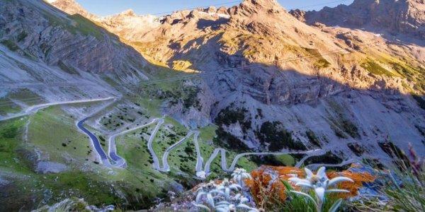 Il Passo dello Stelvio, il gigante alpino entrato nella leggenda